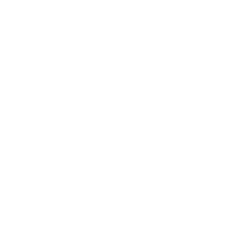 PLUDO.png
